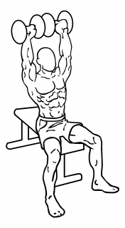 Arnold press small frame 2