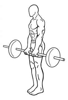 Barbell dead lifts small frame 1