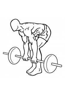 Barbell dead lifts small frame 2