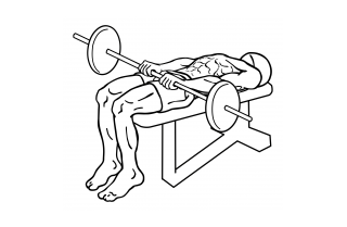Barbell front raise and pullover small frame 1
