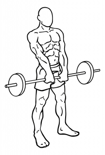 Barbell shrugs small frame 1