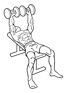 Bench press dumbbell small frame 1