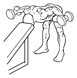 Bent over rear deltoid raise with head on bench small frame 2