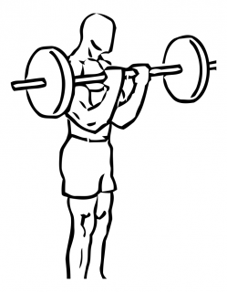 Bicep curl with deadlift with barbell small frame 1