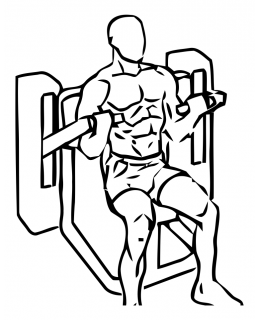 Bicep curl with machine small frame 2
