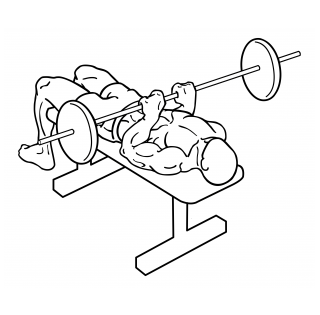 Close grip barbell bench press small frame 1