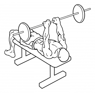Close grip barbell bench press small frame 2