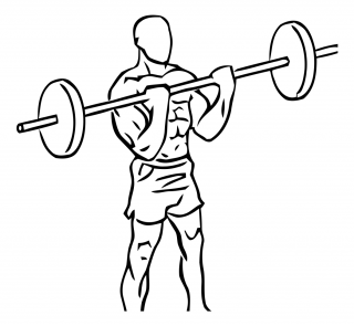 Close grip standing bicep curls with barbell small frame 2