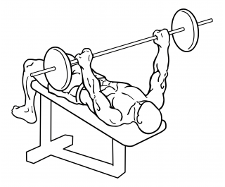 Decline barbell bench press small frame 2