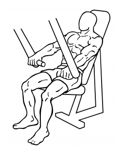 Decline chest press small frame 1