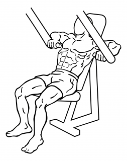 Decline chest press small frame 2
