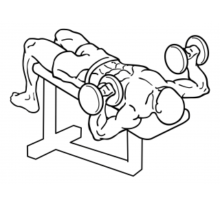 Decline dumbbell bench press small frame 1