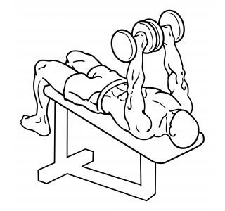 Decline dumbbell bench press small frame 2