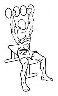 Dumbbell shoulder press small frame 2