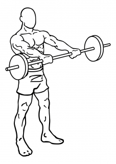 Front barbell raises small frame 1