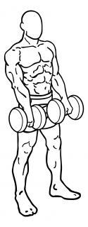 Front dumbbell raise small frame 1