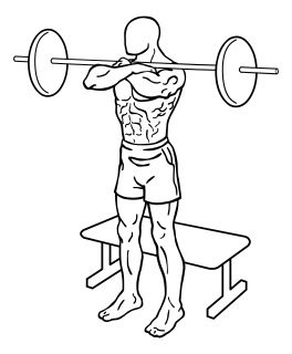 Front squat to bench with barbells small frame 1