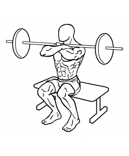Front squat to bench with barbells small frame 2