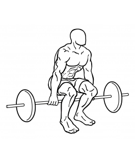 Hack squat with barbell small frame 2