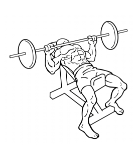 Incline bench press small frame 1