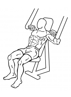 Incline chest press small frame 1
