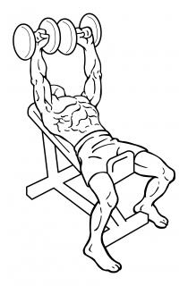Incline shoulder press dumbbell small frame 1