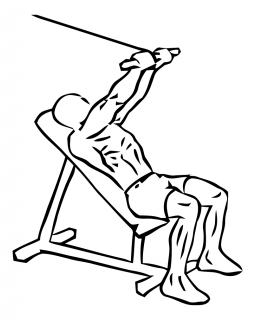 Incline triceps extension with cable small frame 2