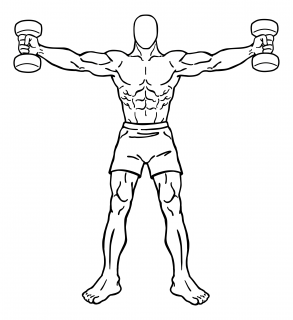 Iron cross with dumbbells small frame 2
