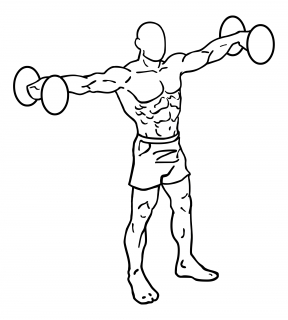 Lateral dumbbell raises small frame 1