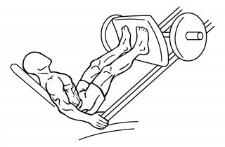 Leg press small frame 1