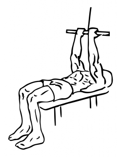 Lying close grip biceps curls with cable small frame 1