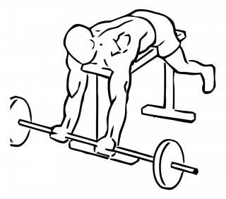 Lying high bench biceps curl with barbell small frame 1