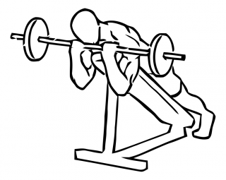 Lying incline curl with barbell small frame 2