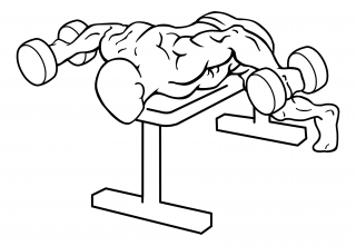 Lying rear lateral raise small frame 2