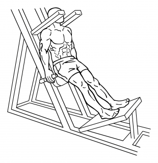 Lying squat small frame 1