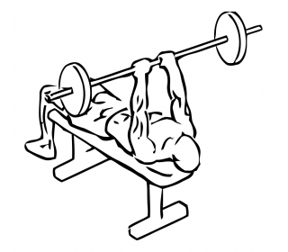 Lying triceps press with barbell small frame 1
