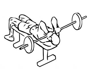 Lying triceps press with barbell small frame 2