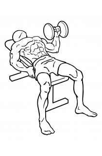 One arm bench press small frame 1