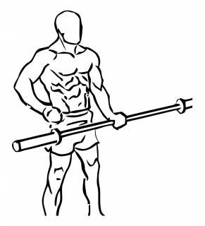One arm bicep curl with olympic bar or barbell small frame 1