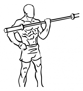 One arm bicep curl with olympic bar or barbell small frame 2