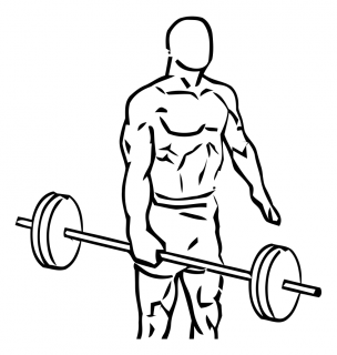 One arm side deadlift with barbell small frame 2