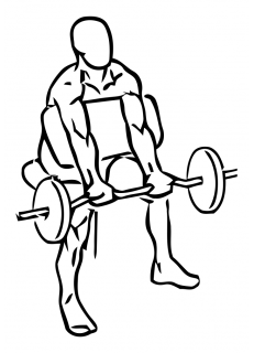 Preacher curl with barbell small frame 1