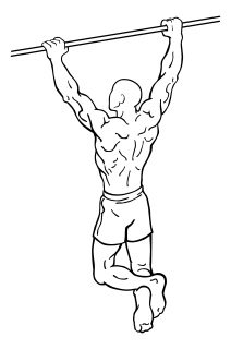 Pull ups small frame 1