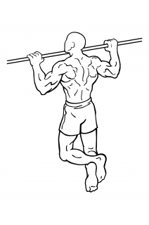 Pull ups small frame 2