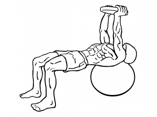 Pullover on stability ball with weight small frame 1