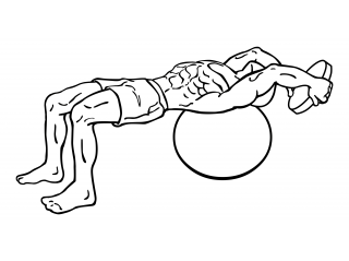 Pullover on stability ball with weight small frame 2