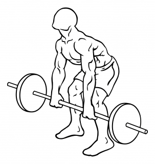 Rear deltoid row barbell small frame 1
