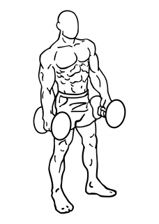 Rear lunges with dumbbell small frame 1