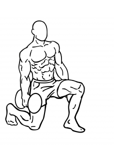 Rear lunges with dumbbell small frame 2