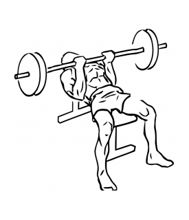 Reverse triceps bench press with barbell small frame 1